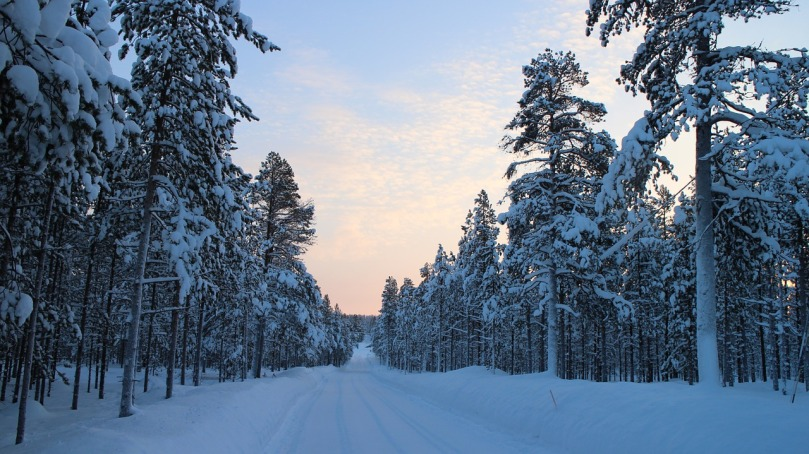 snowy-road-1250967_1280